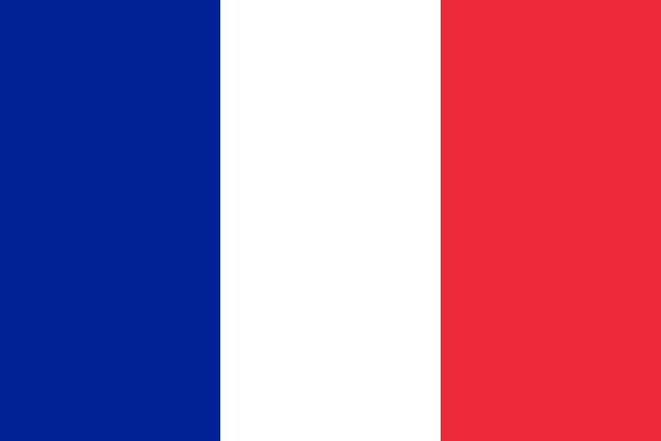 french-flag-medium